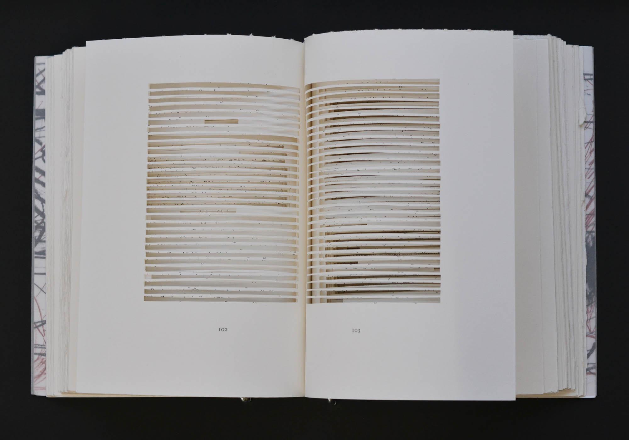 wochenbuch P. Kirkeby